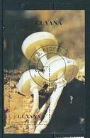 N° 2356 Numéro Michel:107 Champignon Bloc Timbre Guyane 1990 Gyana 2.55  $ - Guyane (1966-...)