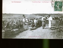 EPERNAY   CHAMPAGNE VENDANGES        JLM - Epernay
