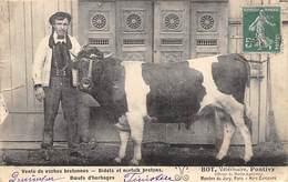 Pontivy      56    M. Bot Vétérinaire  Posant Avec Une Vache         (voir Scan) - Pontivy