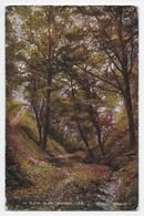 In Elfin Glen, Ramsey, I.O.M. - Valesque Series 83094 - Isle Of Man