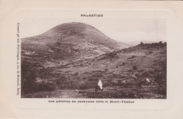 THABOR - Palestina