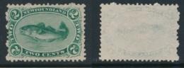 NEWFOUNDLAND, 1865 2c Bluish Green,white Paper Fine Unused No Gum SG31 Cat £120 - Newfoundland