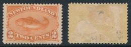 NEWFOUNDLAND, 1887 2c Orange MM, Cat £27 - Newfoundland