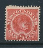 NEWFOUNDLAND, 1887 ½c Rose-red Very Fine MM, Cat £15 - Newfoundland