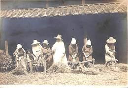 Le Travail Du Blé (photo Masaki Kumamoto) Japon Chine (épreuve, Animée) (15 X 10.5 Cm) - Professions