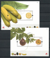 Portogallo Madera 2009 Mi. Bl. 42-43 Foglietto 100% Usato Frutta - Madeira
