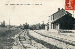 58   BRINON SUR BEUVRON  LA GARE - Brinon Sur Beuvron