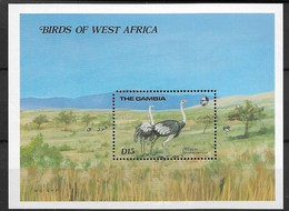 GAMBIA 1985 Birds, Ostriches - Autruches