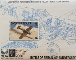 Montserrat   The Stamp Show 2000 ,London S/S - West Indies