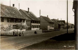 Steineloh - TG Thurgovia