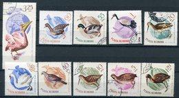 Y85 ROMANIA 1965 2430-2439 Birds. Pelicans Cranes. Swans Ducks. Fauna - Swans