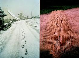 2 Photos Couleurs Originales Empreintes Estivales Ou Hivernales Même Combat ! - Lieux