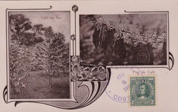 FLOR DEL CAFE, CAFE EN FLOR. LIBRERIA LEHMANN. COFFEE FLOWER. OBLITEREE 1919 COSTA RICA-RARISIME-UNIQUE-TBE- BLEUP - Bloemen