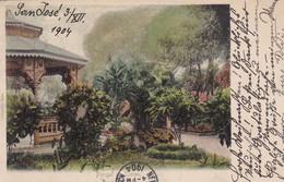 PARQUE EN LIMON. SAN JOSE, COSTA RICA. CIRCULEE 1904 AUSTRIA. STAMP A PAIR UN CENTIMO. AUTRES MARQUES-RARISIME- BLEUP - Costa Rica