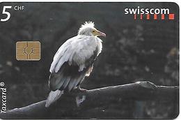 CARTE-PUCE-SUISSE-5CHF-VAUTOUR Percnoptere-TBE - Aquile & Rapaci Diurni