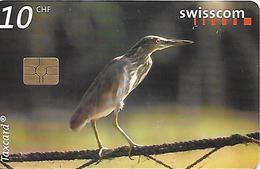 CARTE-PUCE-SUISSE-10CHF-HERON De MANGROVE--TBE - Uccelli