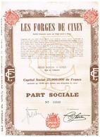 Action Ancienne - Les Forges De Ciney - Titre De 1950 - Industrie