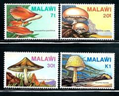 "Malawi     ""Fungi""         Set       SC# 458-61     MNH - Malawi (1964-...)"
