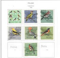 Polonia PO 1966 Birds Foresta   Scott.1452/1457+1459+See Scan On Scott.Page; - 1944-.... Repubblica