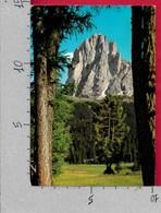 CARTOLINA VG ITALIA - Paesaggio Da Identificare - 10 X 15 - ANN. 1972 ORCIANO DI PESARO - Italy