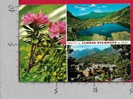 CARTOLINA VG ITALIA - Saluti Da LIMONE PIEMONTE (CN) - Vedutine Multivue - 10 X 15 - ANN. 1985 - Saluti Da.../ Gruss Aus...