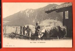 YSK-15  Sur L'Alpe, A L'abreuvoir. Armailli Et Sa Vache.  Précurseur, Non Circulé. CPN G-17 - FR Fribourg
