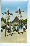 CP Photo Les échassiers De Man  Hoa-Gui Dakar Robel - Postcards
