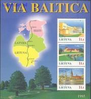 Lithuania 1995 Mi Bl 6 MNH ( ZE3 LTHbl6 ) - Lithuania