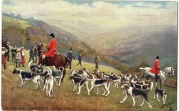 """Tuck's Post Card """"Oilette""""  Viaggiata In Italia 1906  ( 214 ) - Inghilterra"""