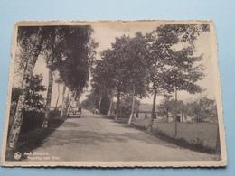 Asch ( Kempen ) Steenweg Naar BREE ( Hôtel Mardaga Asch Tél 34 ) Anno 19?? ( Zie Foto's ) ! - As