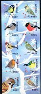 SWEDEN, 2018, MNH,BIRDS, WINTER  BIRDS, BOOKLET - Birds