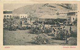 ADEN - 1911 , Camel's Market - Sri Lanka (Ceylon)
