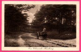 Cpa - Een Veluwsche Boschweg - Attelage - Animée - Foto En Uitg. M.C. TERMAAT - Photogravure Serie - 1931 - Nederland