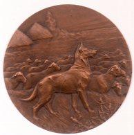 Médaille De Charles VIRION.CHIEN ET TROUPEAU DE MOUTONS.5 Cm.+ Boite. - Professionali / Di Società
