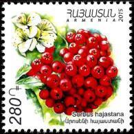 Armenia - 2015 - Flora - Sorbus Hajastana - 75th Anniversary Of Yerevan Botanical Garden - Mint Stamp - Armenien