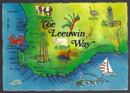 CP W674A- Map Of Western Australia The Leeuwin Way . Non Circulé-unused - Cartes Géographiques