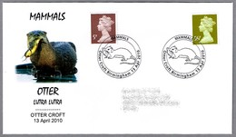 NUTRIA - OTTER - Lutra Lutra. Otter Croft 2010 - Otros