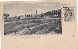 GRAMMONT - GERAARDSBERGEN - 1900 - Panorama De La Ville - Souvenir De Grammont - Geraardsbergen