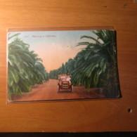 CARTOLINA FORMATO PICCOLO   § -  94 - Cartoline