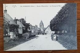 AUBIGNY (18) Route D'ennordres - Le Champ De Mars. Petite Animation - Aubigny Sur Nere