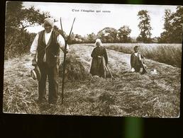 CULTURE    JLM - Landbouw