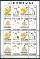 Ivory Coast - Cote Ivoire (1995) Yv. 950/53 - MS  /  Mushrooms - Champignons - Pilzen - Champignons