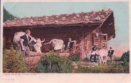 Chalet Des Alpes, Scène Alpestre, Vaches à L'Abreuvoir (cpn 72) - Elevage