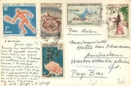 Nouvelle Caledonie - Postée De Nouméa En 1964 - Beaux Timbres - Briefe U. Dokumente
