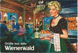 Grusse Aus Dem Wienerwald - Hotels & Restaurants