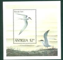 Antigua 591 Roseate Tern SS, Neuf** Sans Charniere, Mint NH, - Antigua And Barbuda (1981-...)