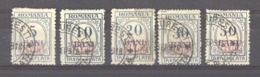 Allemagne  -  Occup. Roumanie  -  Taxes  :  Mi  1-5  (o) - Occupation 1914-18