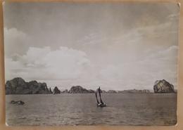 In Halong Basin - Dans Le Bassin De Halong - En La Darsena De Halong - Boat VIETNAM  Nv - Vietnam