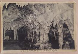 PERTOSA (SALERNO) - GROTTE DI PERTOSA - GALLERIA DEI PIPISTRELLI - Grotto  Nv - Salerno