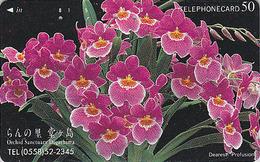 Télécarte Japon / 290-27938 - Fleur ORCHIDEE - DOGASHIMA ORCHID SANCTUARY - Flower Japan Phone Card - ORQUIDEA - 2343 - Fleurs